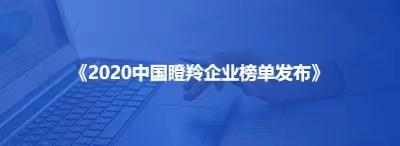 2020中国瞪羚企业榜单发布