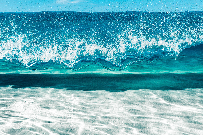 中国海洋经济产业发展全景分析及产业结构